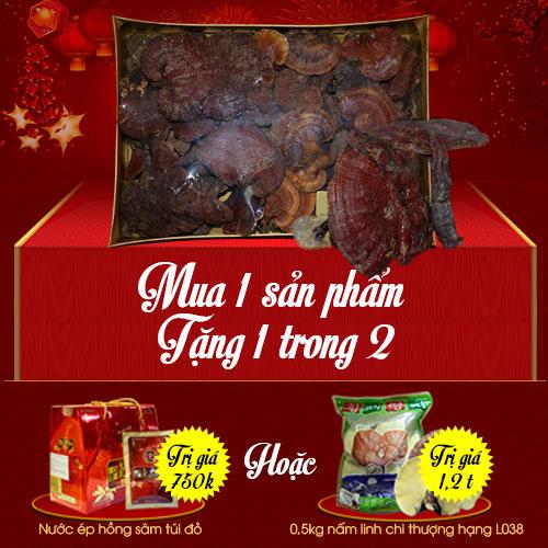Hộp quà Nấm lim xanh Quảng Nam loại 1kg L294