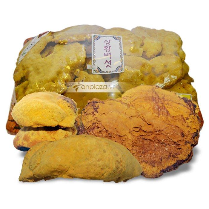 Nấm linh chi thượng hoàng núi hiệu Royal khay 1kg L023