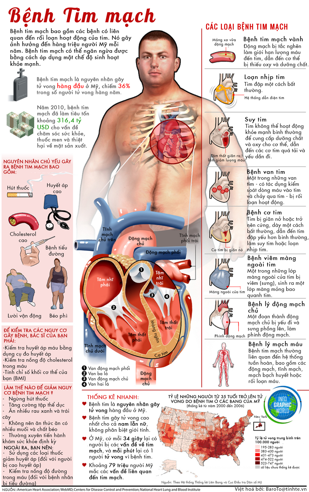 Phòng ngừa hỗ trợ bệnh tim mạch
