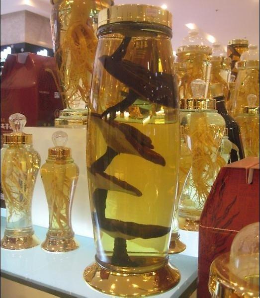 Rượu Linh chi tăng cường sinh lực cơ thể